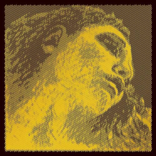 Pirastro Evah Pirazzi Gold