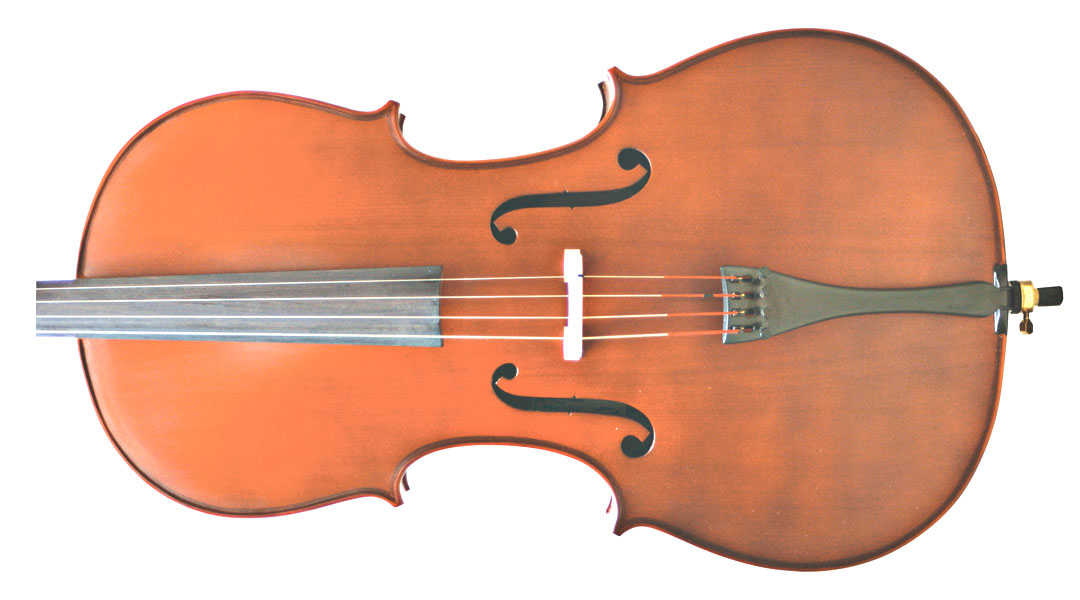 Primavera 100 Cello Front