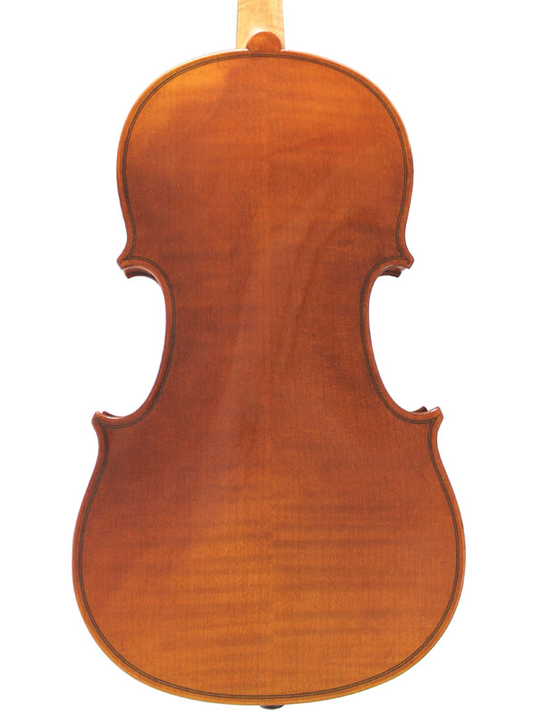 Wessex V Violin Back