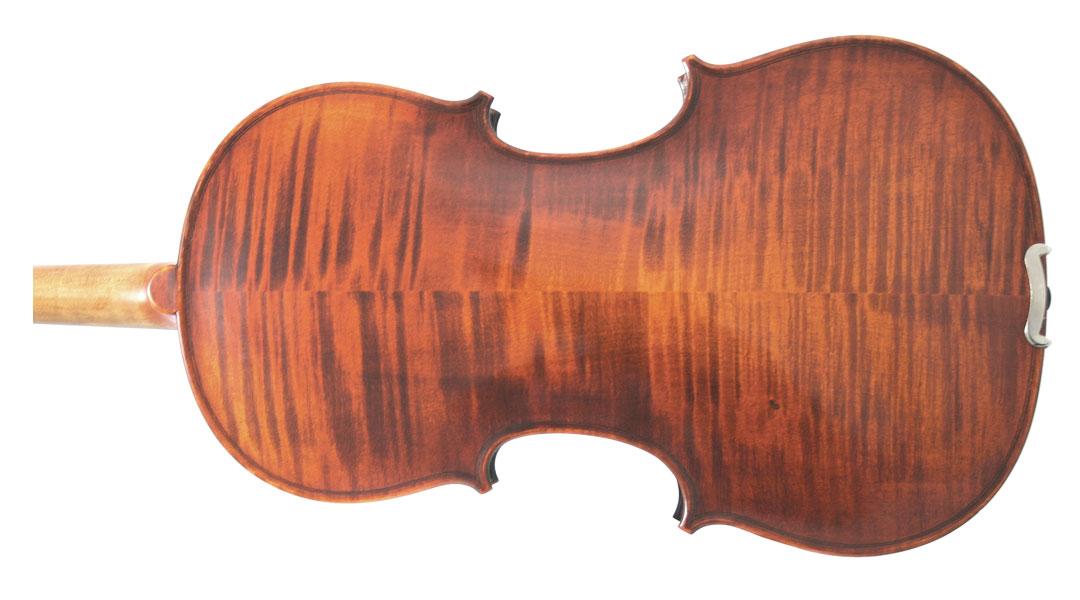 Westbury Viola Back