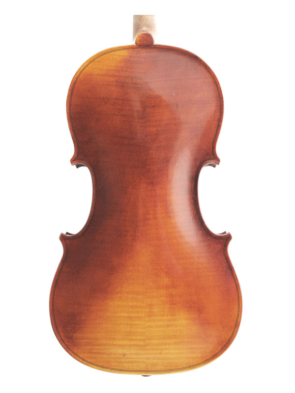 Wessex Viola Back