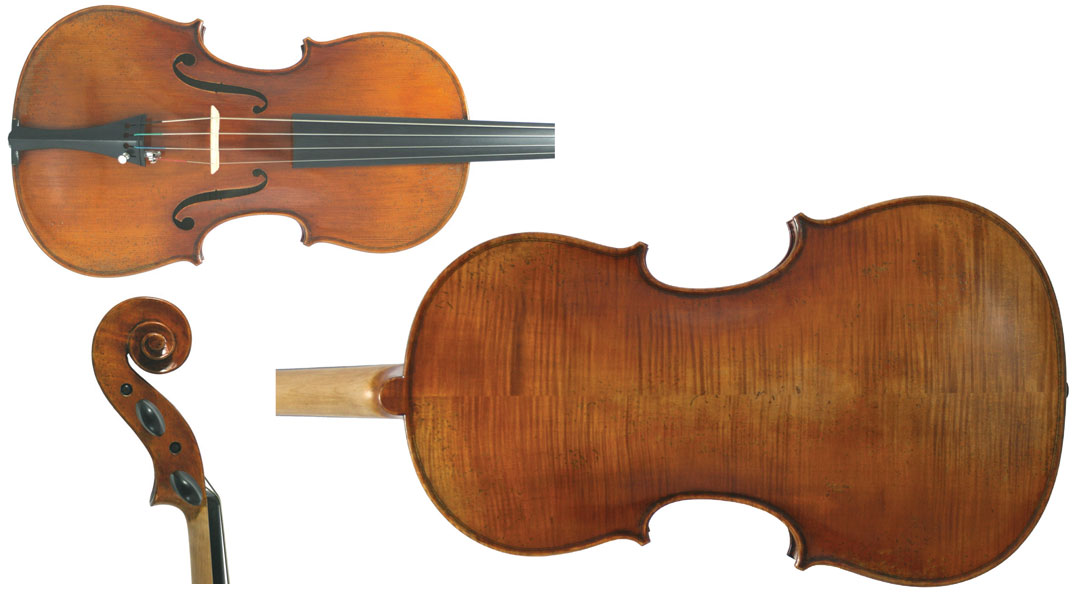 Young Master Viola