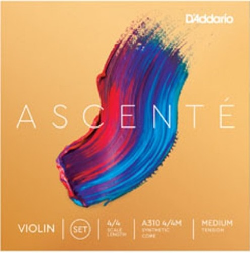 D'Addario Ascente