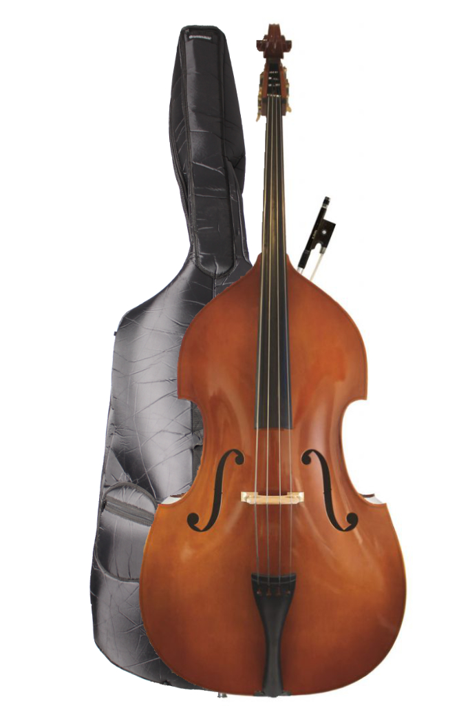 Eastman Bass Bag with Bass (instrument for illustration)